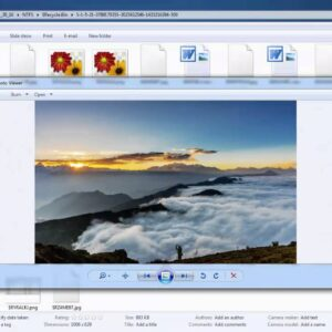 Recover Deleted Recycle Bin Files